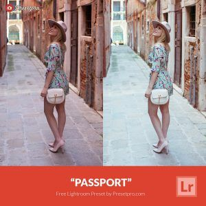 Free-Lightroom-Preset-Passport-Preset-Presetpro.com