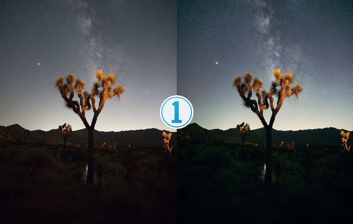 Free-Capture-One-Preset-Stargazer-Before-and-After-Presetpro