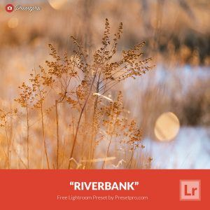 Free-Lightroom-Preset-Riverbank-Preset-Presetpro.com