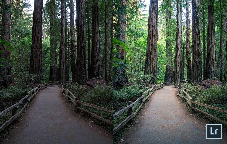 Free-Lightroom-Preset-Trail-Blaze-Before-and-After-Presetpro.com