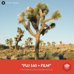 Free-Luminar-Look-FUJ-160-+-film-Preset-Stockpresets