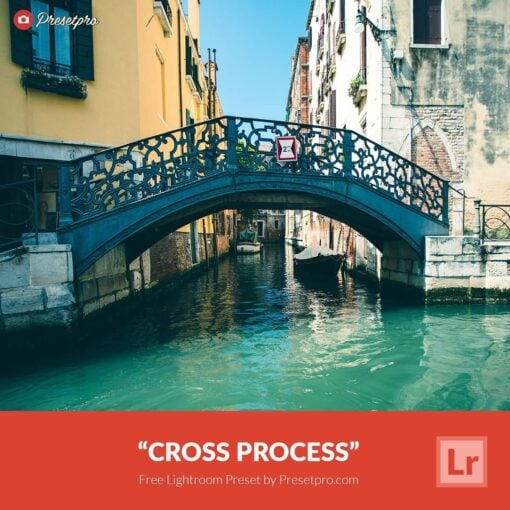 Free-Lightroom-Preset-Cross-Process-Presetpro.com
