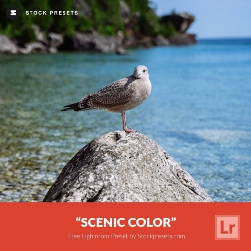 Free-Lightroom-Preset-and-Profile-Scenic-Color-by-Stockpresets.com