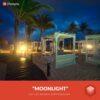Free-Luminar-Look-Moonlight-Preset-Presetpro.com