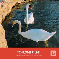Free-Lightroom-Preset-and-Profile-Chrome-Film-Presetpro.com