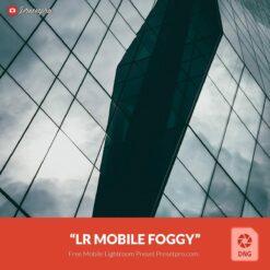 Free-Lightroom-Mobile-DNG-Preset-Foggy-Presetpro.com