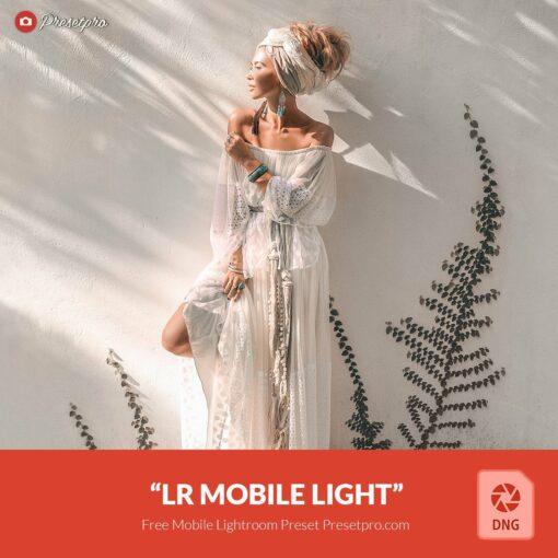 Free-Lightroom-Mobile-DNG-Preset-Light-and-Bright-Presetpro.com