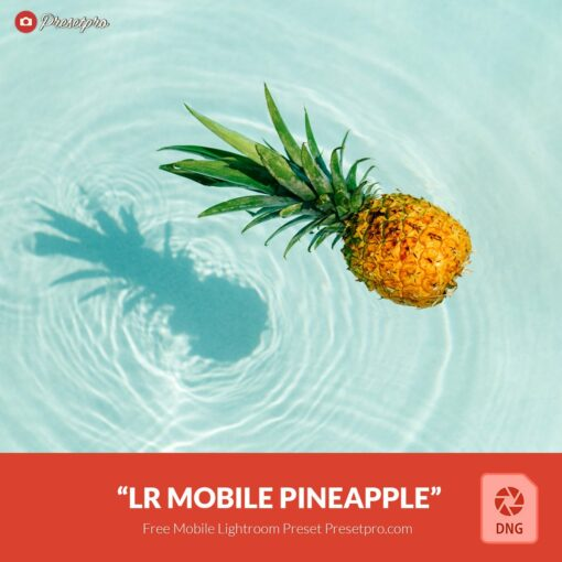 Free-Lightroom-Mobile-DNG-Preset-Pinapple-Presetpro.com