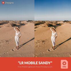 Free-Lightroom-Mobile-DNG-Preset-Sandy-by-Presetpro.com