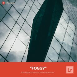 Free-Lightroom-Preset-Foggy-Preset-Presetpro.com