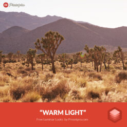 Free Luminar Look | Warm Light - Presetpro.com