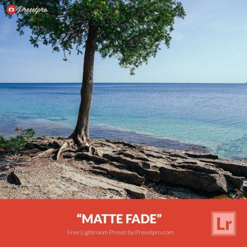 Free Lightroom Preset | Matte Fade
