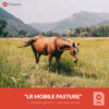 Free-Lightroom-Mobile-DNG-Preset-Pasture-Presetpro.com