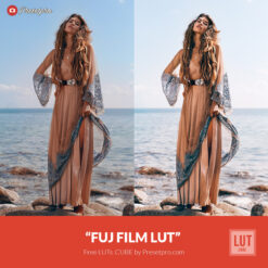 Free-LUT-Lookup-Table-FUJ-Film-Presetpro.com