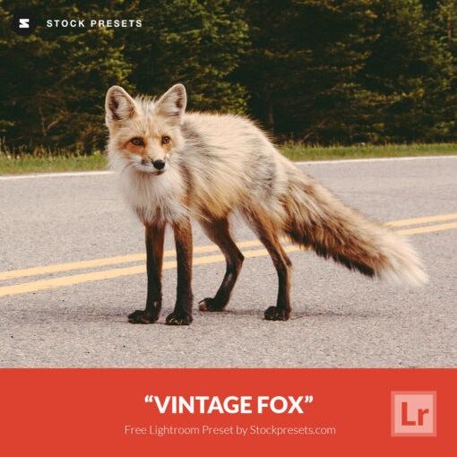 Free-Lightroom-Preset-Vintage-Fox-Stockpresets