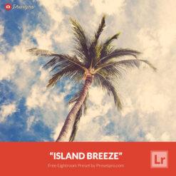 Free Lightroom Preset   Island Breeze