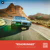Free LUTs Lookup Table | Roadrunner LUT Stockpresets.com