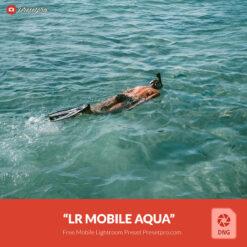 Free-Lightroom-Mobile-DNG-Preset-Aquanaut-Presetpro