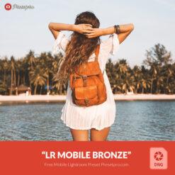 Free-Lightroom-Mobile-DNG-Preset-Bronze-Presetpro