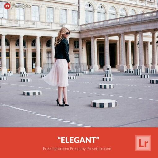 Free Lightroom Preset | Elegant Preset
