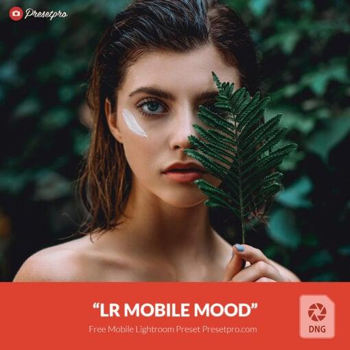 Free-Lightroom-Mobile-DNG-Preset-Mood-Presetpro