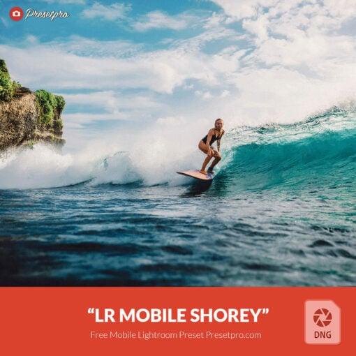 Free-Lightroom-Mobile-DNG-Shorey-Presetpro
