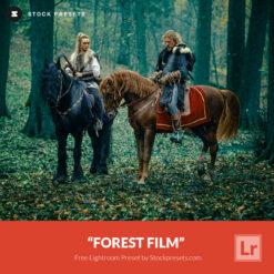 Free-Lightroom-Preset-Forest-Film-Stockpresets