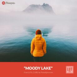 Free LUT Moody Lake Lookup Table Presetpro.com