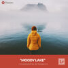 Free Lightroom Preset and Profile Moody Lake Presetpro.com