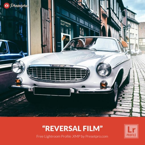 "Free Lightroom Profile ""Reversal Film"" Presetpro.com"
