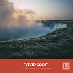 Free Lightroom Preset and Profile Vivid Cool Presetpro.com