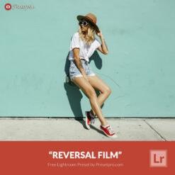 Free Lightroom Preset and Profile Reversal Film Presetpro.com