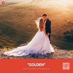Free LUT Golden Lookup Table Presetpro.com