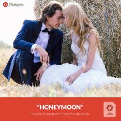 Free-Lightroom-Mobile-DNG-Honeymoon-Preset-Presetpro.com