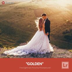 Free Lightroom Preset Golden Presetpro.com